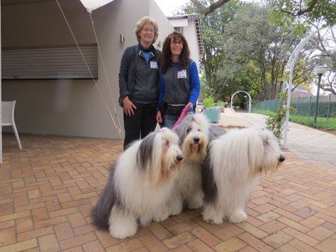 May General Meeting with Sue Green and JOY Dogs
